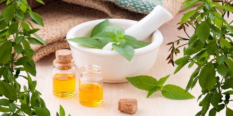 Santé au naturel info, médecine traditionnelles, produits bio ou vegan