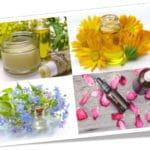 Meilleurs livres d'aromathérapie et huiles essentielles TOP 5